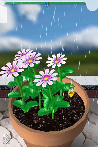 100510_flower_garden_02
