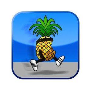 Jailbreak tethered de l'iOS 4.3.3 disponible