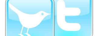 Twitter annonce 100 millions de comptes actifs… sur 200 millions d'inscrits