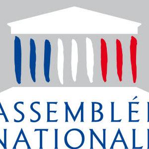 """Terme """"illimité"""" : quand l'Assemblée Nationale ne parle pas français"""