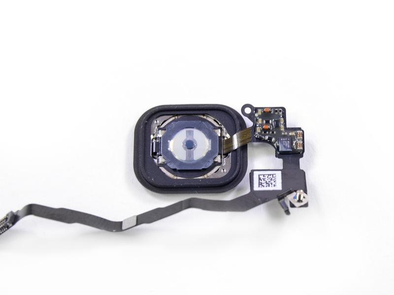 L'iPhone 5S est disponible mais aussitôt démonté par iFixit