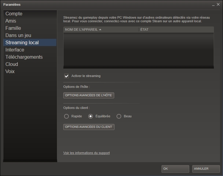 Steam - Test du Streaming Local