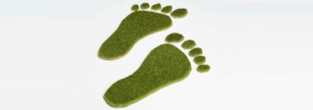 Toners et cartouches : vers la création d'une encre écologique