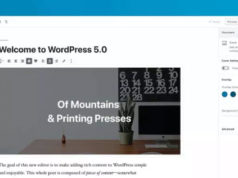 "WordPress 5 ""Bebo"" est disponible"