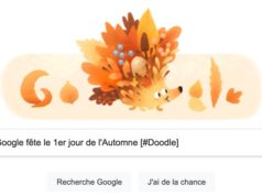 Google fête le 1er jour de l'Automne, l'Equinoxe d'Automne 2021 [#Doodle]